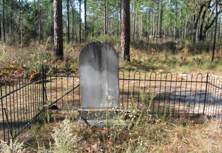 Image of a single headstone enclosed by a fence and covered with grass in the old columbus cemetery at suwannee river state park. Pine sandhill habitat is seen in the background.